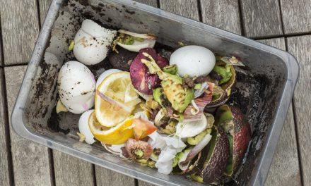 Så förvandlar du din kompost till en godisbutik