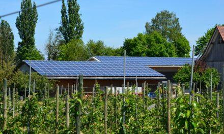 Coronan ger boom för solcellsanläggningarna