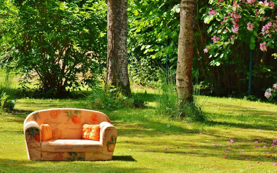 sofa, couch, nature
