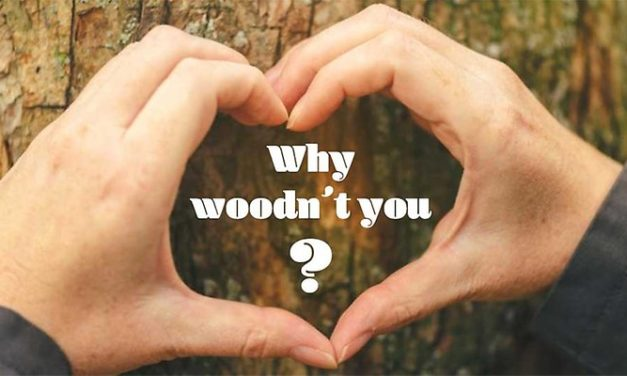 Hållbart: Visst går det att bygga höga trähus