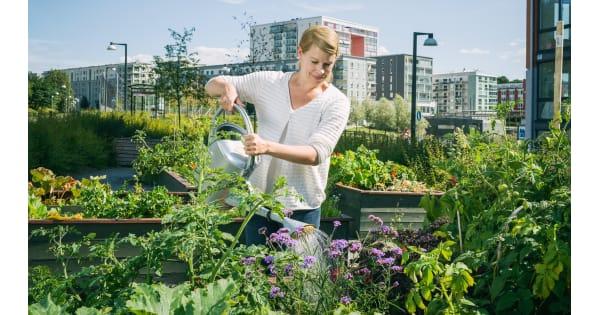 Hållbar belysning toppar årets lista för bostadsföreningarna